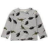 MRULIC Baby-Jungen-Catoon-Dinosaurier-Druck-T-Shirt übersteigt Hemden T-Stück beiläufigen Pullover(Grau,Höhe:130-135CM)