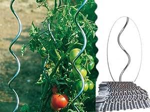 Harms tuteur spirale en acier galvanis pour pieds de tomate jardin - Tuteur tomate spirale leclerc ...