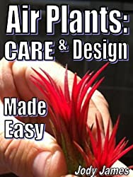 Air Plants: Care and Design Made Easy (English Edition)