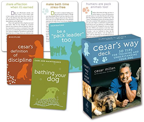 Cesar's Way Deck: 50 Tips for Training and Understanding Your Dog -
