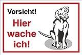 Schild Warnschild - Achtung freilaufender Hund – Betreten auf eigene Gefahr - Hund Hundeschild 30x20cm Hartschaum Aluverbund -S31G