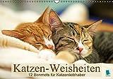 Katzen-Weisheiten: 12 Bonmots für Katzenliebhaber (Wandkalender 2017 DIN A3 quer): Charmante Stubentiger: Besinnliches und Heiteres (Monatskalender, 14 Seiten) (CALVENDO Wissen) - k.A. CALVENDO