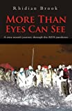More Than Eyes Can See: A Nine Month Journey into the Aids Pandemic