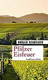 Pfälzer Eisfeuer: Palzkis 16. Fall (Kriminalromane im GMEINER-Verlag)