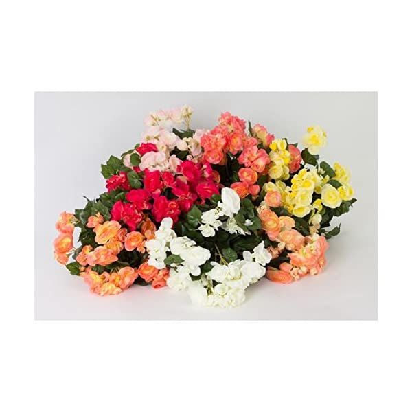 artplants.de Begonia Artificial con 74 Hojas, 16 Flores, Crema, 40cm, Ø 30cm – Planta Decorativa – Flores sintéticas
