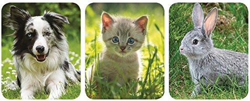 Ellofence Kleintier Weidezaun mit Weidezaunnetz für Kaninchen Hunde Katzen Kleintiere - 2