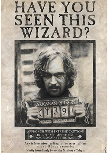 harry-potter-poster-wanted-sirius-black-98x68cm