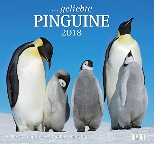 Geliebte Pinguine 2018 - DuMont Wandkalender - mit den wichtigsten Feiertagen - Format 38,0 x 35,5 cm