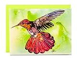 Rainbow Card Company arcobaleno della società colibrì biglietto d' auguri–rubino topazio