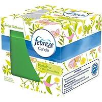 Febreze Duftkerze Blütenzauber, 2er Pack (2 x 1 Stück) preisvergleich bei billige-tabletten.eu