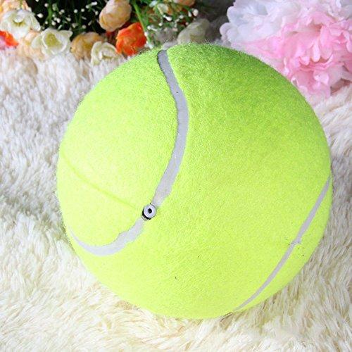 Riesentennisball Hund Kaut Spielzeug Outdoor oder im Zimmer zu Hause zum Spielen und Trainieren Das Beste Für Die Gesundheit Eines Hundes Durchmesser 24cm - 5