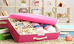 House of Quirk 15+1 Compartment Cell Foldable Storage Box type Non-Smell Drawer Organizer 15 grids + 1 for underwear Closet Storage for Socks Bra Tie Scarfs - Pink