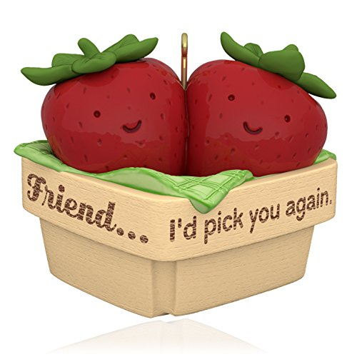 hallmark-carte-souvenir-decoration-pick-you-again-ami-fraises