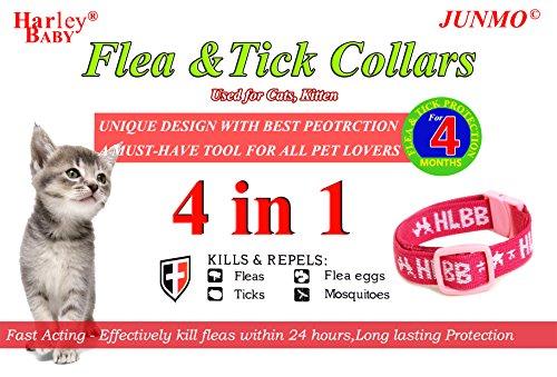 collar-de-pulgas-y-garrapatas-para-todo-tipo-para-perros-y-gatos-los-preparativos-amitraz-y-natural-
