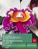 Orchideen für Fortgeschrittene: Expertenwissen zu über 80 Gattungen (BLV)