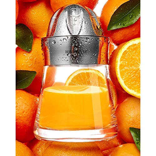 GBX Sommer-Getränkezubereitung Mixer-Hartglas-Zitruspresse mit Lagerung, Home/Outdoor-Edelstahl Manuelle Entsafter Obst Zitrone Limette Orangenpresse Eingebauter Filter