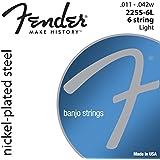 Fender 073-2255-406 Banjo Cuerdas, NPS, 2255-6L de 6 cuerdas, Medidores 0,011-0,042 Conjunto de 6