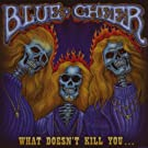 What Doesn't Kill You... [Vinyl LP]