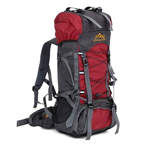 Outdoor Sport Rucksack 55L Bergsteigen Tasche Mit Gürtel Trägt System Red