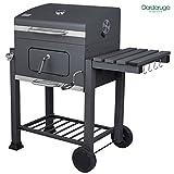 DARDARUGA BBQ Barbecue grill a carbone carbonella con ripiano griglia affumicatore