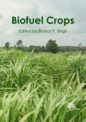 [(Biofuel Crops : Production, Physiology and Genetics)] [Edited by B. P. Singh] published on (November, 2013)