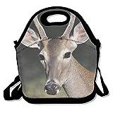 Dozili Reh im Tierreich große & dicke Neopren-Lunch-Taschen, isolierte Lunch-Tasche, Kühltasche, warm, mit Schultergurt, für Damen, Teenager, Mädchen, Kinder, Erwachsene