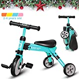 XJD 2 In 1 Kids Trike for 2-4 Years Old Boys Girls 3 Wheels Toddler Tricycle Baby Balance Bike Folding Trike (blue)