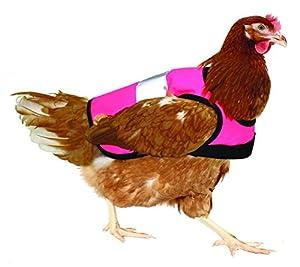 Gilet de signalisation pour poules - Rose