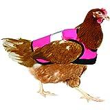 Warnweste für Hühner - Pink