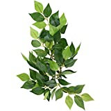 Hagen Exo Terra Silk Fiscus Plant Small