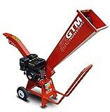 GTM Häcksler GTS600 mit starkem 5,5 PS GTE Motor, Einfuhr 25 x 25 cm, Maße 134 x 47 x 132 cm