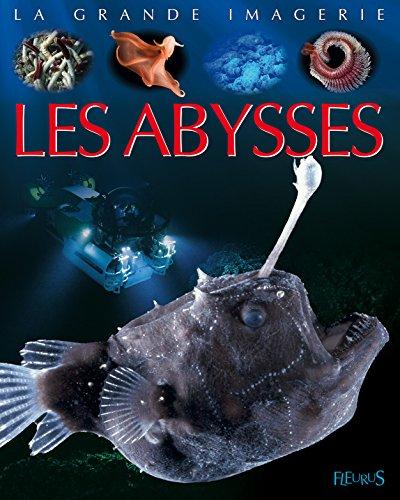 Les abysses par Laure Cambournac