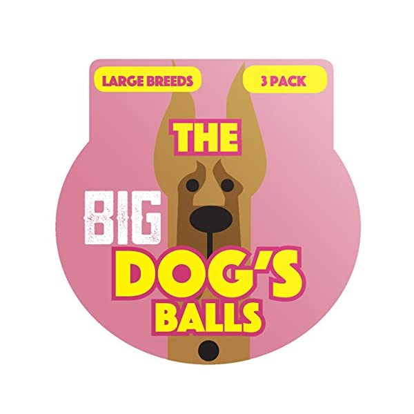 The Dog's Balls, Dog Tennis Balls in 3 Sizes, 4 Colors, Quality Dog Toys, Premium Strong Dog Ball 5
