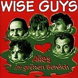 Songtexte von Wise Guys - Alles im grünen Bereich
