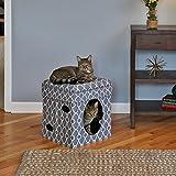 Curious Katze Cube Grau Kuschelhöhle katzenspielzeug für katzen 38,4 x 38,4 x 42cm, Katzenhöhle und Hocker und Katzenbett in 1 Normal €59,5 ! Super Amazon Katzenbettchen Promo