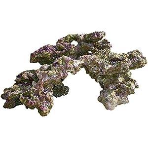 Haquoss Rock Viva in Harz 6, 48x 33x 25h cm
