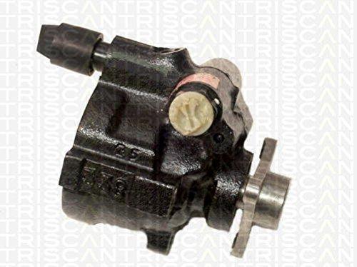 Preisvergleich Produktbild Triscan 8515 25613 Hydraulikpumpe,  Lenkung