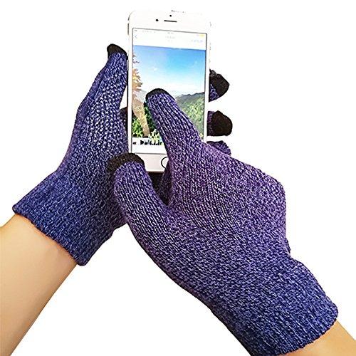 iEverest Unisex Touchscreen Handschuhe Anti-Rutsch-Handschuhe Lover Handschuhe dicke Handschuhe Smartphone Touchscreen Handschuhe für das Fahren und Telefonieren im Freien Winddicht (Königsblau)
