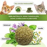 3x Katzenminze Ball | Naturprodukt | Besteht aus 100% natürlicher Katzenminze | Entspannung für Katzen | Katzenspielzeug | Fördert den natürlichen Spieltrieb | Unterstützt die Zahnpflege | 1A Qualität - 4