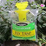 Coohole Fly Trap -Disposable Flycatchers, Designed to Attract Egg-Laying Females - 1 Pack