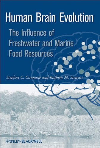 Human Brain Evolution: The Influence of Freshwater and Marine Food Resources (English Edition)