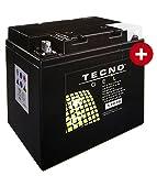 TECNO-GEL Motorrad-Batterie 53030, 12V Gel-Batterie 30AH, 178x123x16 mm