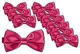 BomGuard Fliege für Herren pink I Männer Fliege für Hochzeit, Party oder edele Anlässe I Trendy Bow Tie I 10er Set