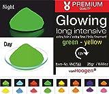 van Hoogen Leucht-Pulver Fluoreszierend :: Glüh-Pulver mit Streuer 100gr. GRÜN (Tag und Nacht)