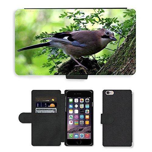 Just Mobile pour Hot Style Téléphone portable étui portefeuille en cuir PU avec fente pour carte//m00140331Jay Oiseaux Woodland plumes//Apple iPhone 6Plus 14cm