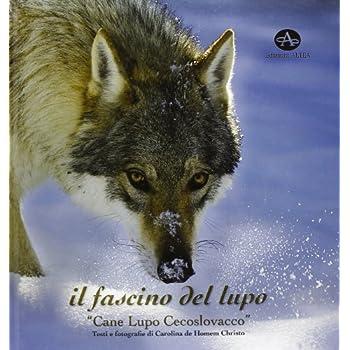 Il Fascino Del Lupo. Cane Lupo Cecoslovacco-The Charm Oh A Wolf. Czechoslovakian Wolfdog. Ediz. Illustrata