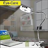 LED Klemmleuchte Bett Leselampe Kleine Schreibtischlampe Klemmlampe Tischlampe 6W Silber mit 2 Lichtfarben: Kaltweiß und Warmweiß (Ohne Adapter) (Nicht Dimmbar)