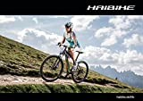 Poster Haibike - Life 2015; Format: A1 594x841mm (Querformat)