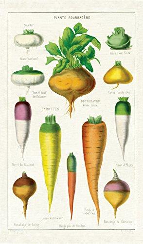 Cavallini Papers & Co. Cavallini Vintage Gemüse Baumwolle Geschirrtuch, Multi