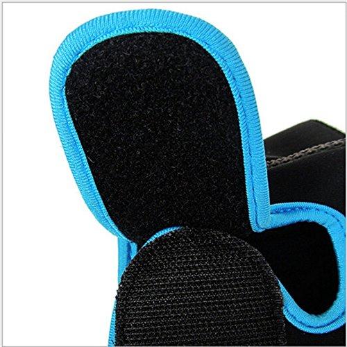 lumanuby 1Paar Damen Herren 's Gym Handschuhe, Half Finger Handschuhe semi-breathable Verschleißfest Rutschfest Fitness Handschuhe für Outdoor Ausreit Klettern atmungsaktives Sport Handschuhe Workout Training, Blue M, 18-21CM - 7